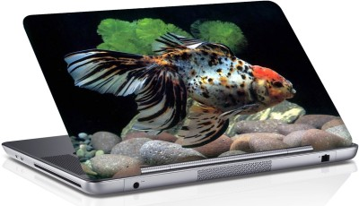 Shopmania spooted Fish Vinyl Laptop Decal 15.6