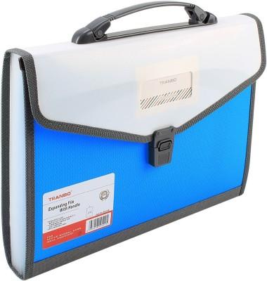 TRANBO Polypropylene File Folder with 13 Pockets, Handle, Index Tab, A4 Size, Light Blue(Set Of 1, Light Blue)