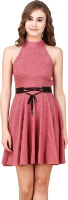 Texco Women Skater Pink Dress