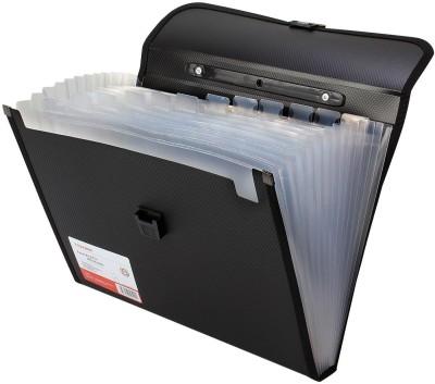 TRANBO Plastic File Folder with 13 Pockets, Handle, Index Tab, A4 Size (Black)(Set Of 1, Black)
