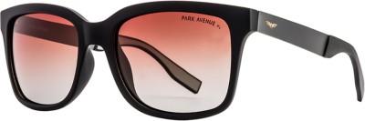 Park Avenue Wayfarer, Retro Square Sunglasses(Brown)  available at flipkart for Rs.2943