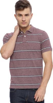 HAIG-DOT Striped Men Polo Neck Maroon, White T-Shirt