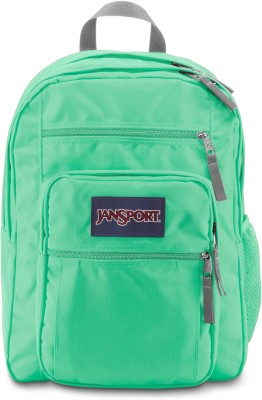 JanSport Big Student Seafoam Green 34 L Backpack(Green)