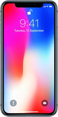 Apple iPhone X (Space Gray, 256 GB) at flipkart