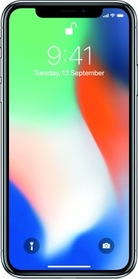 Apple iPhone X (Silver, 256 GB)