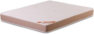 Springtek Dual Comfort Orthopaedic 5 inch Single PU Foam Mattress
