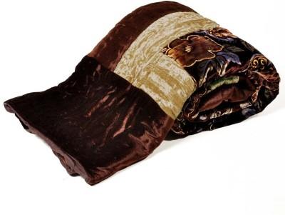 Traditional Crush Floral Single Comforter(Cotton, Brown) at flipkart