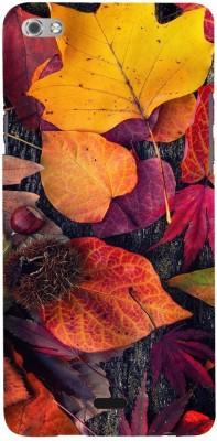 Snapdilla Back Cover for Micromax Canvas Sliver 5 Q450 Multicolor