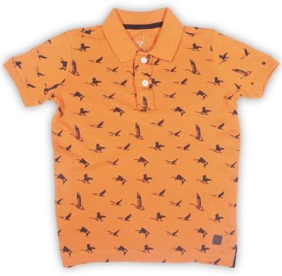 Allen Solly Junior Boys Printed Cotton T Shirt(Orange, Pack of 1)