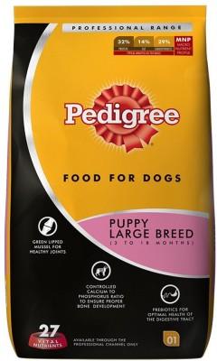 Pedigree puppy large breed 10 kg Dry Dog Food