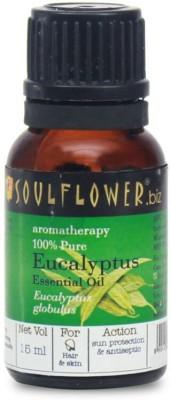 Soulflower Eucalyptus Essential Oil(15 ml)