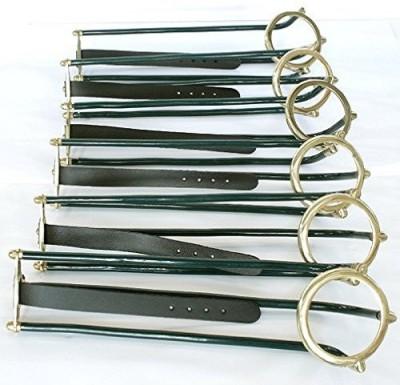 Laxmi Ganesh Billiard 6 PIECE RAILING SET Pool, Billiards, Snooker Cue Stick(Steel)