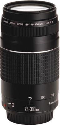 Canon EF 75-300mm f/4-5.6 iii  Lens for(Black, 17-70)