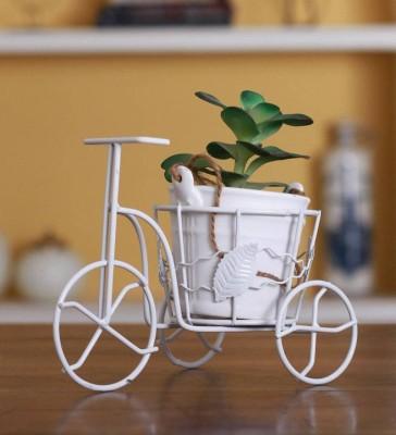 Afast Designer Hand Decorative Glass Table Top Flower Pot Vase In New Shape Art -H20 Glass Vase(8 inch, Orange)
