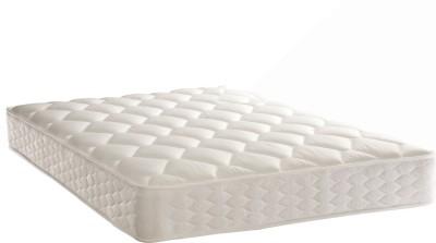 Springtek Latex Plus 5 inch Queen Bonded Foam Mattress
