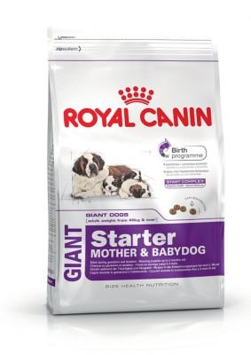 Royal Canin Giant Starter 1 kg Dry Dog Food