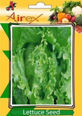 https://rukminim1.flixcart.com/image/400/400/jc5458w0/plant-seed/x/f/z/30-lettuce-vegetables-seeds-pack-of-30-seeds-1-per-packet-airex-original-imaewrwgc7ghrpxe.jpeg?q=90