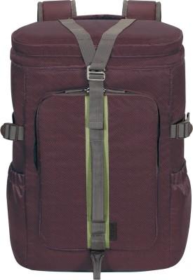 Targus TSB90603-70 Laptop Bag(Plum)