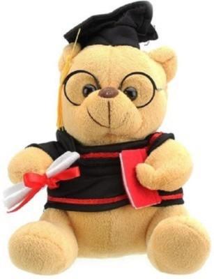 Cuddles collections scholar teddy Brown 22   22 cm Brown Cuddles collections Soft Toys