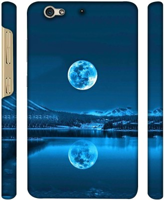 Casotec Back Cover for Gionee S6 Multicolor