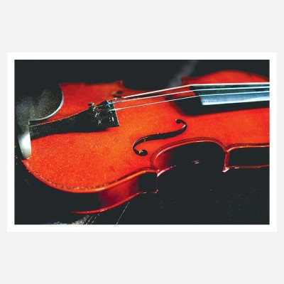 CRAZYINK(VIOLIN)WALL POSTER (12 * 18) INCH Paper Print(12 inch X 18 inch)  available at flipkart for Rs.169