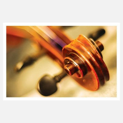 CRAZYINK(CLOSE SHOTS OF VIOLIN)WALL POSTER (12 * 18) INCH Paper Print(12 inch X 18 inch)  available at flipkart for Rs.169