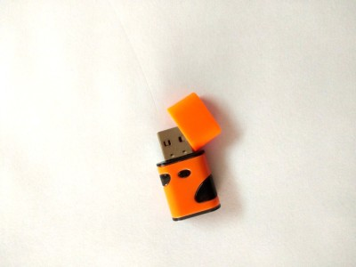 LEOGER USB2.0 Card Reader(Orange)