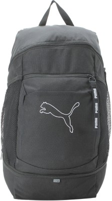 3e8acb0d255c Buy Puma Echo IND 23 L Backpack(Grey) on Flipkart