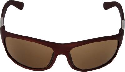 Mango People Wayfarer Sunglasses(Brown)  available at flipkart for Rs.249