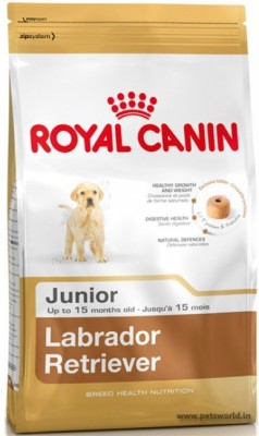 https://rukminim1.flixcart.com/image/400/400/jea9x8w0/pet-food/g/3/b/3-dog-labrador-retriver-royal-canin-original-imaf2yfpr6gwfq4g.jpeg?q=90