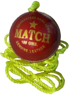 Tima Sports Hanging Shot Practise Cricket Ball   Size: 6  Pack of 1, Red  Cricket Training Ball   Size: 6 Pack of 1, Red Tima Cricket Training Ball