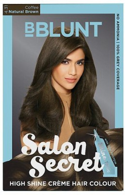 BBlunt Salon Secret High Shine Cream Hair Color(Natural Brown 4.31)