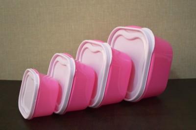 Flipkart SmartBuy Elegance  - 1500 ml, 800 ml, 500 ml, 300 ml Polypropylene Grocery Container, Fridge Container(Pack of 8, Green)