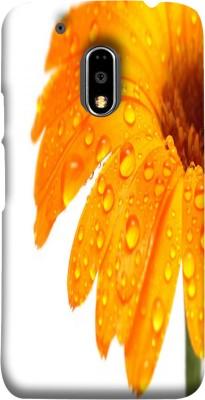 LifeDesign Back Cover for Motorola Moto E3 Power Multicolor, Shock Proof, Plastic