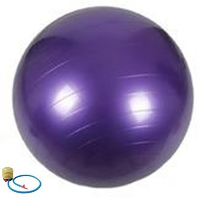 FITGURU EXERCISE BALL 75 CMS PURPLE Gym Ball(With Pump)