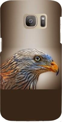Snapdilla Back Cover for Samsung Galaxy S7 Edge Multicolor