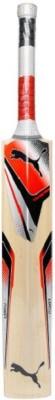 https://rukminim1.flixcart.com/image/400/400/jg6v24w0/bat/q/f/z/600-long-handle-evo-power-4000-english-willow-89364401-puma-original-imaeyzgf33pfu2ff.jpeg?q=90