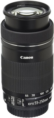Canon EF S 55 250mm F4 5.6 IS STM for SLR Cameras Lens