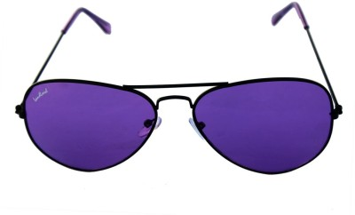 landlord Aviator Sunglasses(For Boys & Girls)