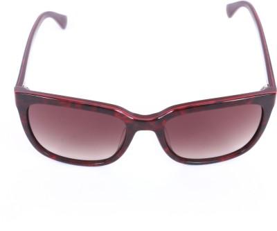 Calvin Klein Wayfarer Sunglasses(Brown) at flipkart