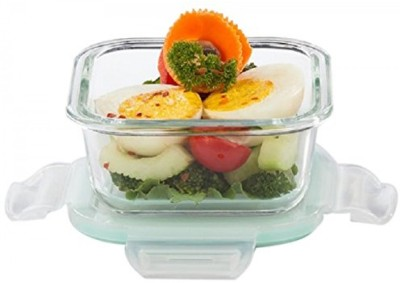 Signoraware sig1707 1 Containers Lunch Box