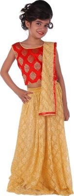 943229f81e 72% OFF on DELHIITE Girls Lehenga Choli Party Wear, Ethnic Wear Self Design  Lehenga