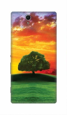 Seasons4You Back Cover for Sony Xperia C3 Multicolor, Hard Case