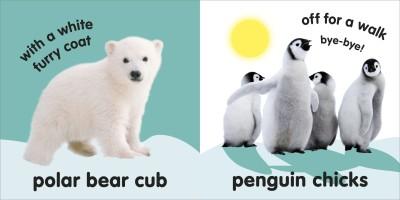 https://rukminim1.flixcart.com/image/400/400/jm2c87k0/book/0/1/9/baby-touch-and-feel-fluffy-animals-original-imaf8grrzjrtzzgy.jpeg?q=90