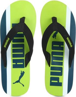 017809091 Puma Epic Flip v2 Graphic Mens DP Slippers