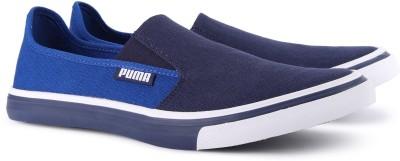 Buy Puma Apollo Slip On IDP Casuals For