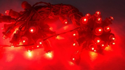 Expeditious 20 inch Red Rice Lights Pack of 5