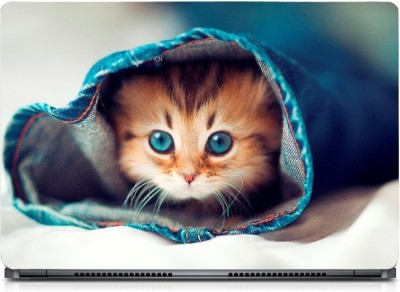 Gallery 83 ® Blue Eyes Cat in Jeans Exclusive High Quality Laptop Decal, laptop skin sticker 15.6 inch (15 x 10) Inch G83_skin_0163new Vinyl Laptop Decal 15.6