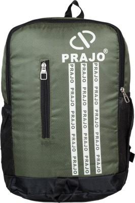 Prajo Omega Backpack 21 L Backpack(Green)