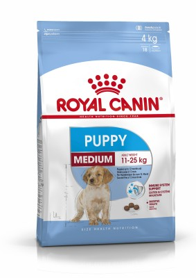 Royal Canin MEDIUM JUNIOR 1 kg Dry Dog Food